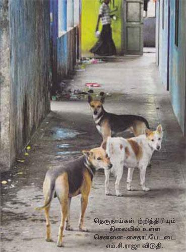 ஆதிதிராவிடர்-பழங்குடியினர் நல மாணவர் விடுதிகள் : அரசின் வதைமுகாம்கள் !