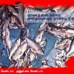 கூடங்குளம் அணு உலையை மூடு கார்டூன் போஸ்டர் பேனர்