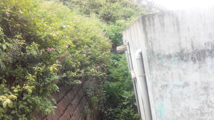 kothagiri-govt-hospital-4