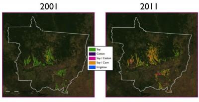 brazil-deforestation