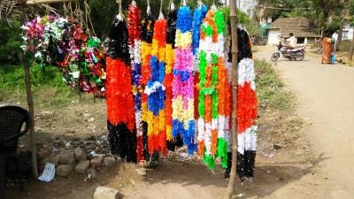 Thanjai vilaage (4)