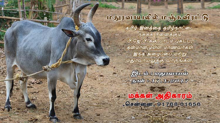 pp Manjuvitattu