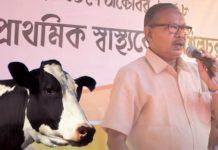 cow-Assam-mla