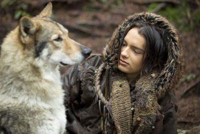wolf became dog