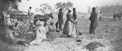 slavery in america political economy